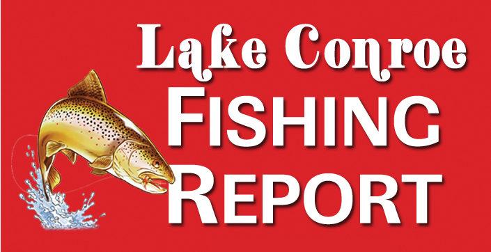 Lake Conroe Fishing Report – May 2020