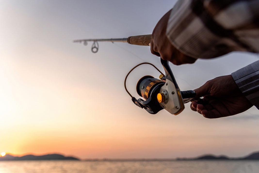Fish News June 2021