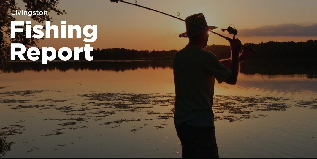 Lake Livingston Fishing Report