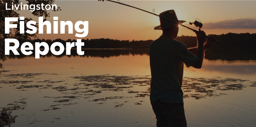 Livingston fishing report