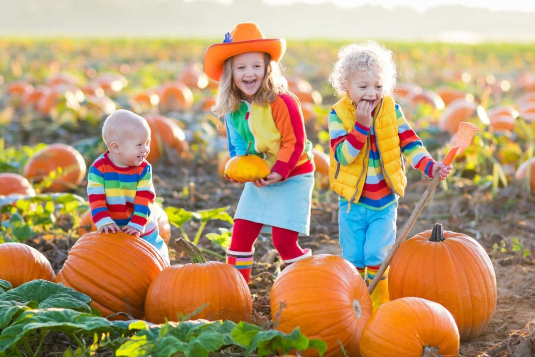 Fun Fall Activities in Texas to do with Your Family